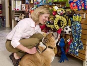 CQP vendeur jardinerie option animalerie